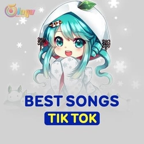 Lagu DJ TIK TOK